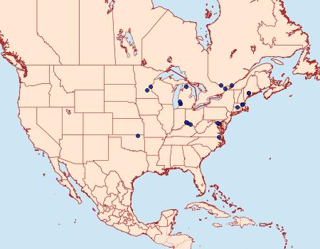 Distribution Data for Coleophora atromarginata