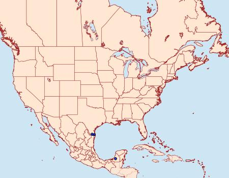 Distribution Data for Thessia jalapus