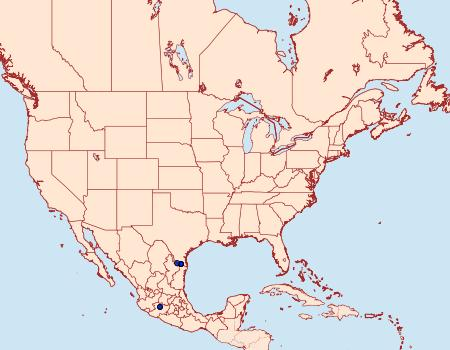 Distribution Data for Achlyodes pallida