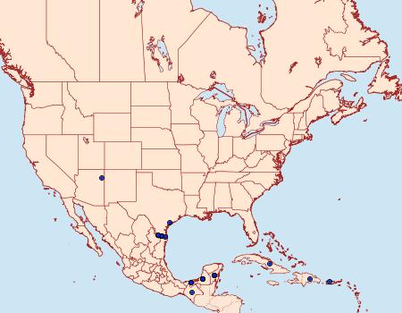 Distribution Data for Historis acheronta