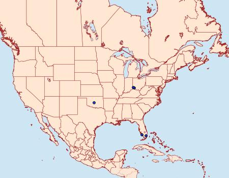 Distribution Data for Phyllonorycter mildredae